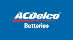 ACDelco Replacement Batteries